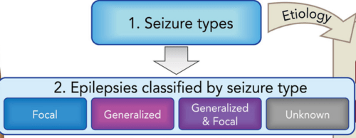 framework for epilepsy classification the etiological framework can also be used for